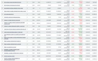 MFI Service Broker - Screenshot Portafoglio